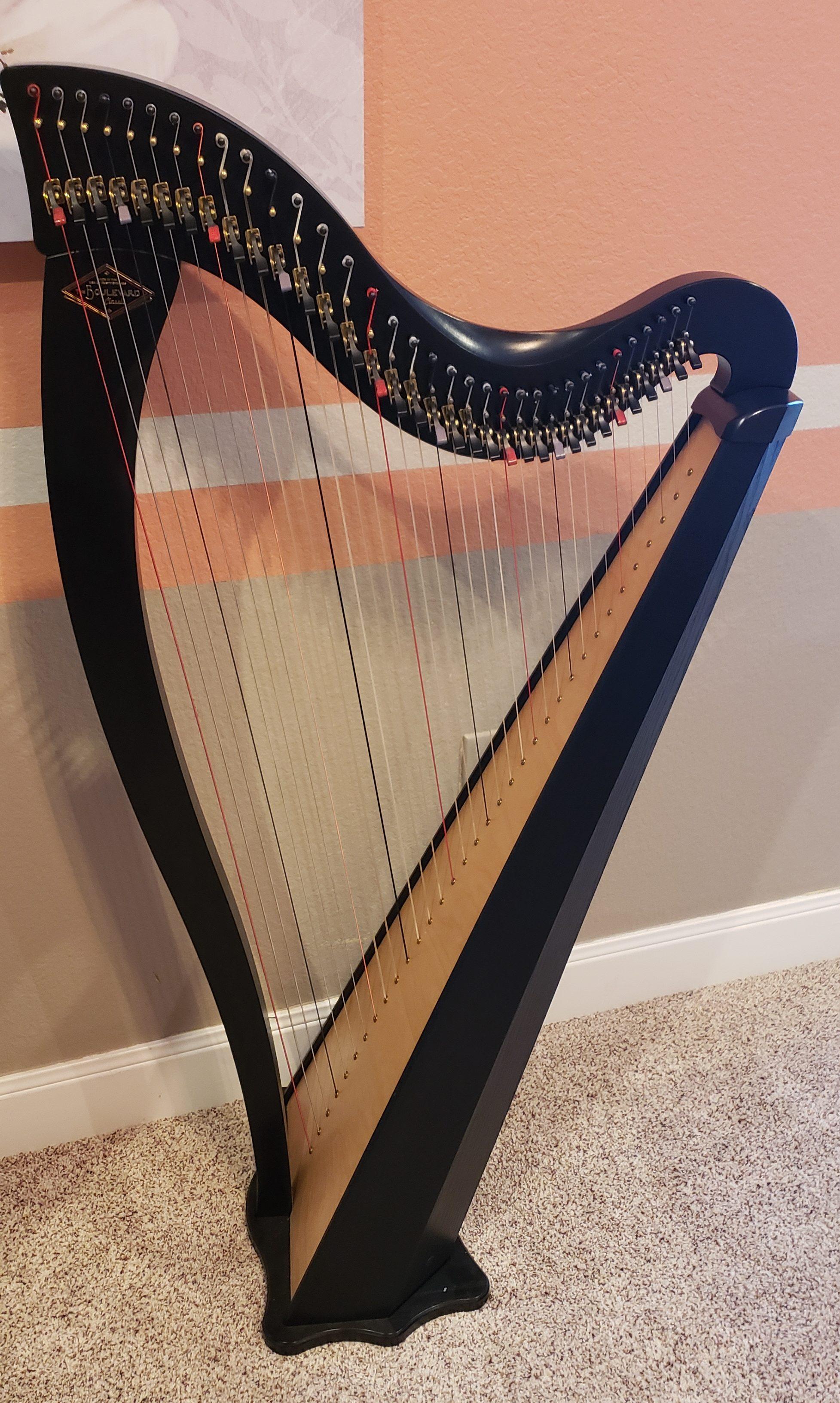 Dusty Strings Boulevard harp for rent