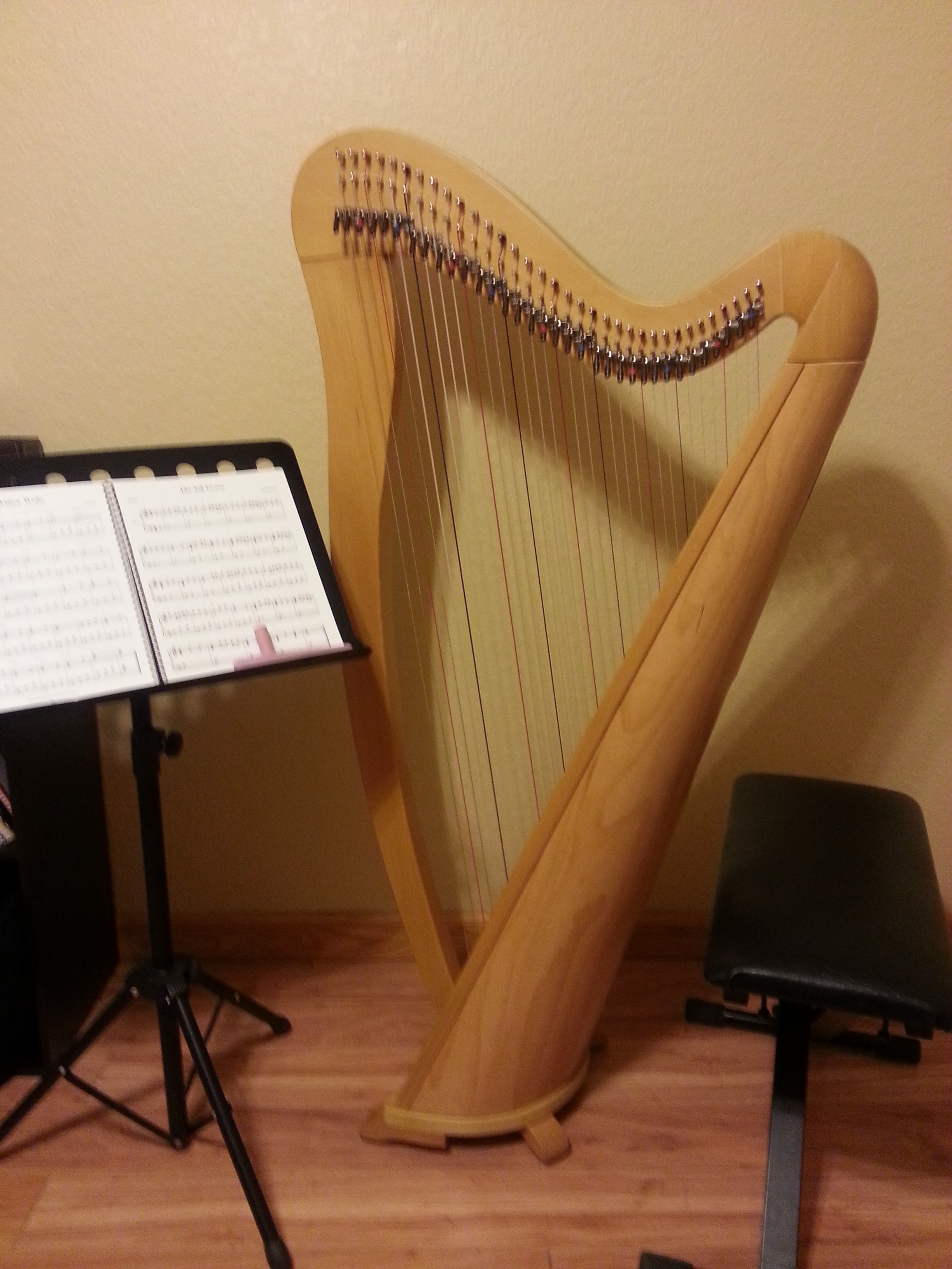 Lever harp for rent 34 strings full levers