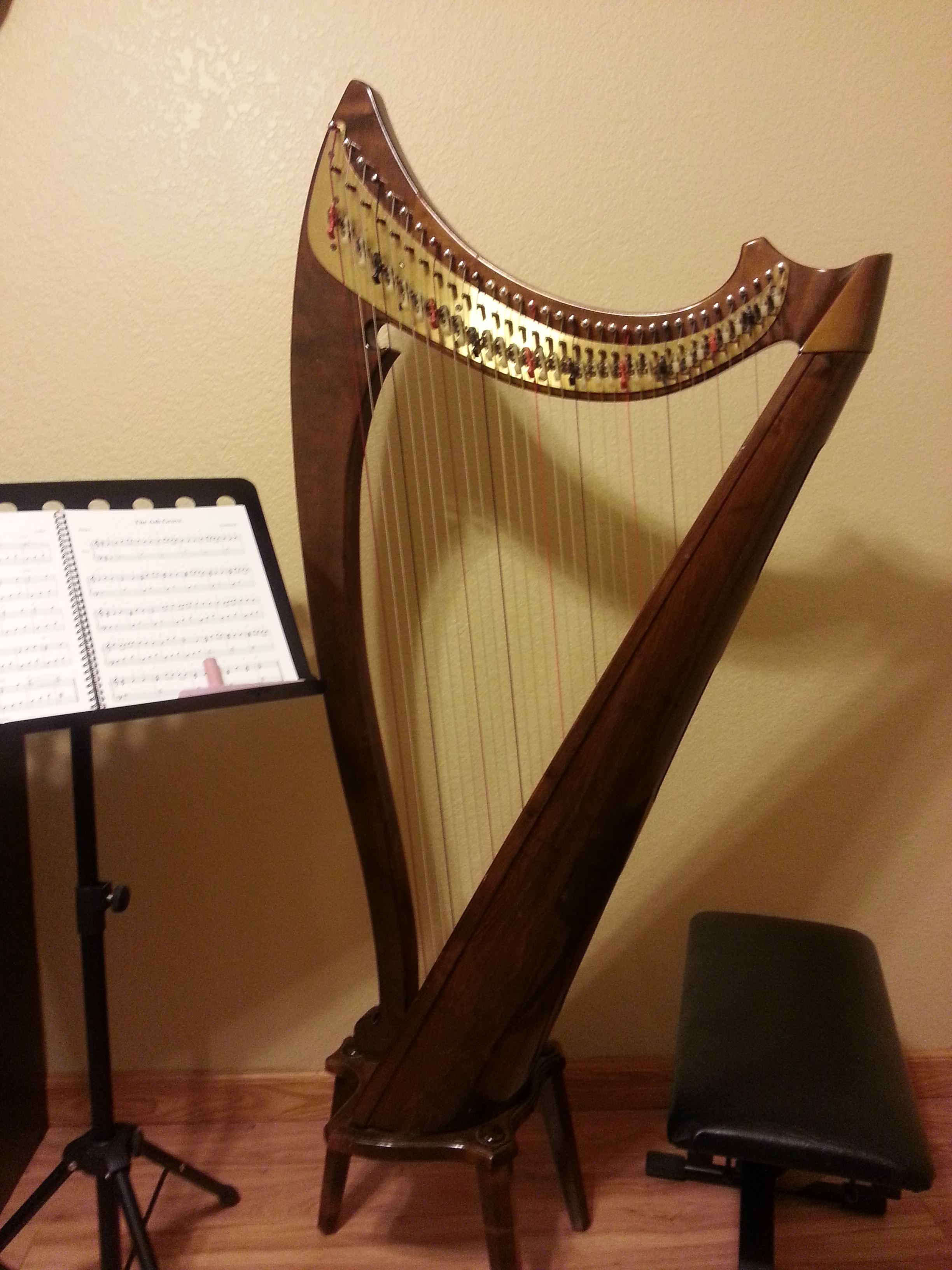 Salvi Renaissance 34 string harp for rent