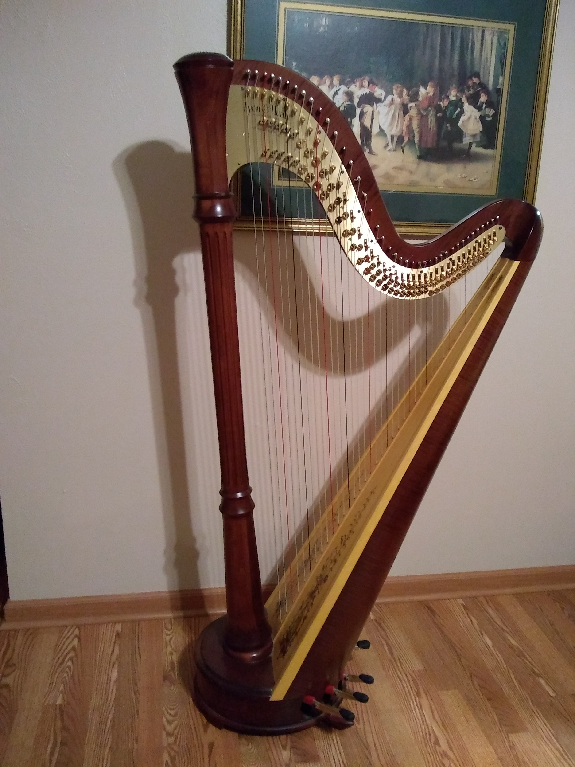 Lyon & Healy Style 85 Petite Pedal Harp for Sale